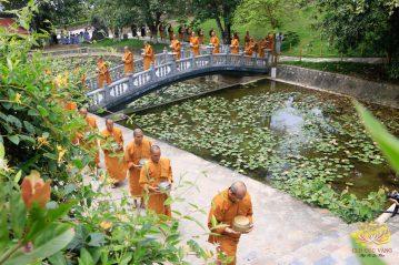 CLB Cúc Vàng cúc dường Chư Tăng mùa Phật đản