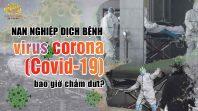 Nạn nghiệp dịch bệnh virus corona (covid 19) bao giờ thì chấm dứt?