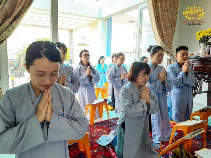 Các Phật tử nỗ lực tu tập để hồi hướng cầu cho mưa xuống vùng đất hạn hán tại đồng bằng sông Cửu Long