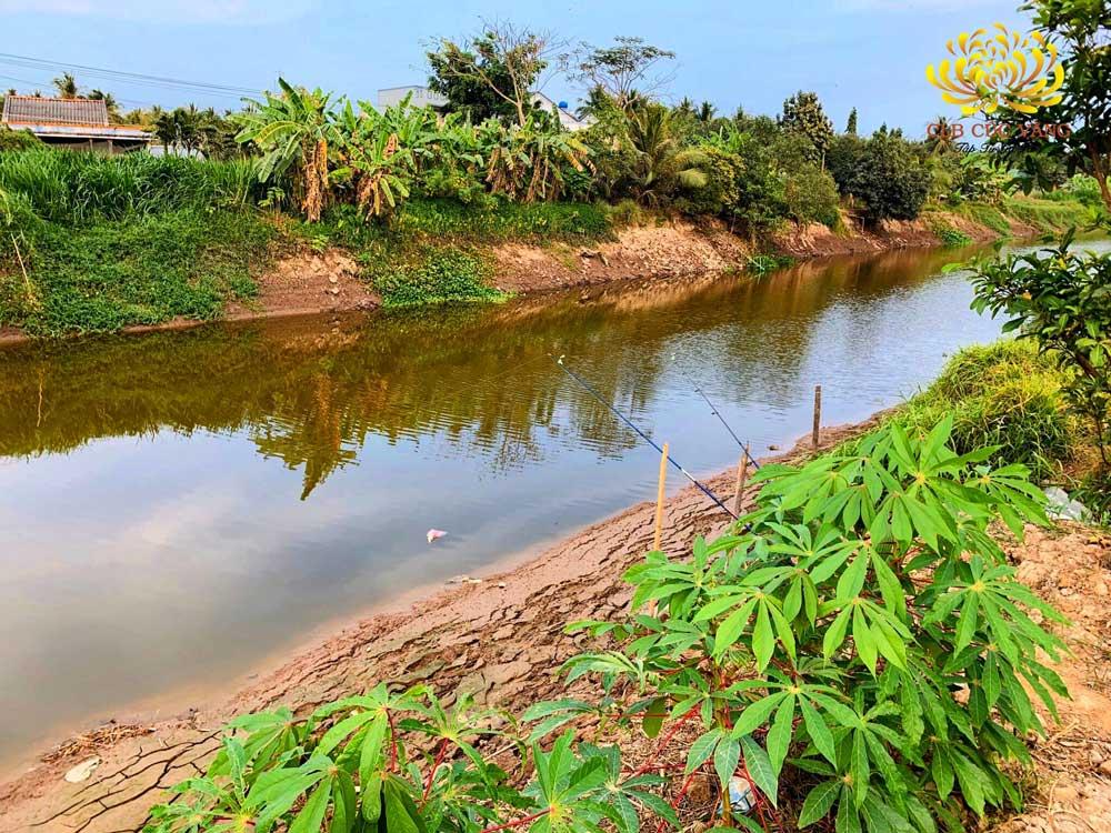 Nước ở sông ngòi đã dâng lên sau cơn mưa, cây cối cũng trở nên xanh tốt hơn sau bao ngày hạn hán