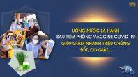 Uống nước lá hành sau tiêm phòng vaccine COVID-19